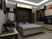 Шкаф-кровать: решение для малогабаритной квартиры